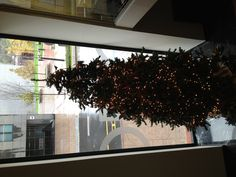 Xmas tree @ the Miró