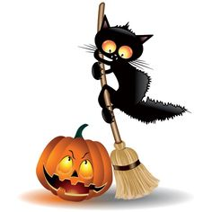 Vector Black cat with Halloween pumpkin illustration 40039-Vector-Scarcy-black-cat-halloween 40039-Vector-Scarcy-black-cat-halloween