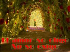 El amor se elige, NO se exige...