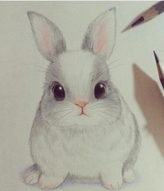 cute, drawing, and rabbit image