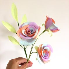 Pastel Coloured 3 Rose Collection handmade from high quality crepe paper Paper Candy, Paper Vase, Thing 1, Candy Bouquet, Rainbow Art, Crepe Paper, Colored Paper, How To Make Paper, Wedding Paper