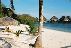 Lusting For Exotic Shores… | Slim Paley
