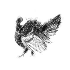 Sketch A Day, Fine Art Drawing, Drawing Ideas, Art Drawings, Amazing Drawings, Illustration Art, Illustrations, Sketches, Uk Shop