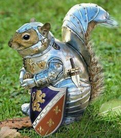 He may be a bit squirrely, but he's deadly serious about protecting his nuts! #SCA #armor #funny