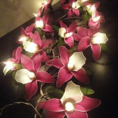 20 Pink Magenta Orchid Flower Fairy String Lights by marwincraft' on Wish