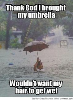 Funny pictures, jokes and funny memes sharing website to make others laugh. Get more funny pictures here. Login and share funny pic to make world laugh. Really Funny Pictures, Funny Pictures With Captions, Funny Picture Quotes, Picture Captions, Funny Images, Hilarious Pictures, Funny Rain Quotes, Rain Pictures, Funniest Pictures