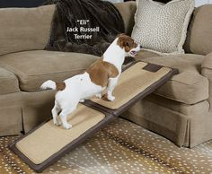 When your dog starts to get too old to get onto the couch, or your dog\\\'s simply too small, there are easier things you can do other than picking him up. Ramps can make yours and your dog\\\'s life a lot easier, with built-in steps to help him get onto ...
