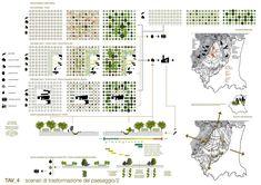 Tesi Di Laurea In Architettura Del Paesaggio - Picture gallery