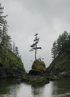 Dead Man's Cove - Oregon