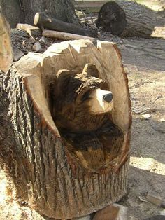Chainsaw Art  thegardendiaries.wordpress.com