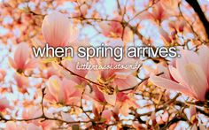 Find images and videos about pink, flowers and spring on We Heart It - the app to get lost in what you love. Dont Forget To Smile, Don't Forget, Your Smile, Make You Smile, Justgirlythings, Reasons To Smile, Get To Know Me, Look At You, Simple Pleasures