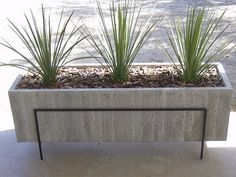 concrete planter boxes design (2)
