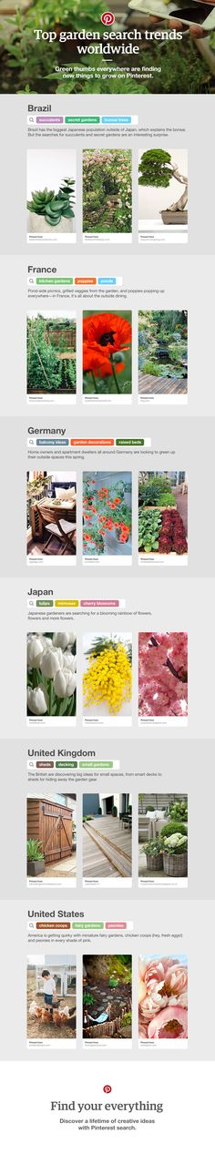 The latest garden search trends from around the globe: See what gardeners from Japan to Brazil are searching for on Pinterest.