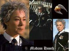 Image result for madame hooch