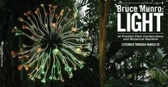 Bruce Munro: Light at Franklin Park Conservatory, Columbus, OH  Now on view through March 30.