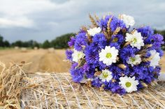 cornflower bouquet   Wedding Ideas / Cornflower bouquet... LOVE IT!