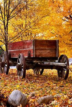 Antique Wagon and autumn colors by snehit  An old, historic wooden wagon in a field with leaves colorful autumn trees in the background: