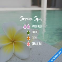 Serene Spa - Essential Oil Diffuser Blend