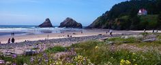 Heceta Beach, Oregon Coast