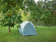 Castlerigg Hall camp