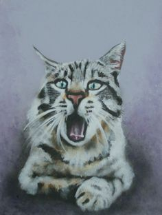 Cat painting original painting of cat by VictoriaColemanArt