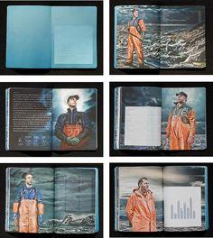 SUROFI - Visual Identity/Conceptual branding by Tom Emil Olsen, via Behance