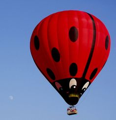 Lady bug hot air balloon.   #HotAirBalloon #hot_air_balloon   ➤ Image credit: cattycamehome, via Flickr