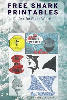Pack of 32 Underwater Friends Invitations Sea Animals Party Invites