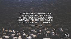 Image result for charles darwin environment day quote