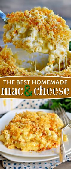 The Best Ever Homemade Baked Mac and Cheese Recipe The BEST Homemade Mac and Cheese of your LIFE. Outrageously cheesy, ultra creamy, and topped with a crunchy Panko-Parmesan topping, this mac and cheese recipe is most definitely a keeper. I used three d Pasta Dishes, Food Dishes, Homemade Cheese Sauce, Best Homemade Mac And Cheese Recipe, Mac And Cheese Sauce, Mac N Cheese Bake, Homemade Recipe, Homemade Mac And Cheese Recipe With Cream Cheese, Dining