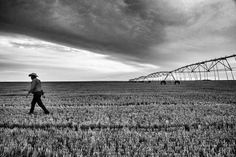 Photo @edkashi/@viiphoto: Cattle #rancher Casey Murdock 43 surveying the spot where the famous Arthur Rothstein image of the great #dustbowl in the 1930's was made. His fields are now irrigated but the area is in its 9th year of drought near Felt Okla. on July 27 2013. According to a recent NY Times article there is strong evidence that the warming of the climate is intensifying the effects of droughts as well as causing more frequent and intense heat waves worsening coastal flooding and…