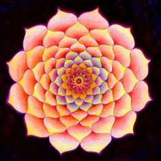 Eitan Kedmy ❤~ Mandala ~❤
