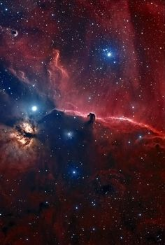 "The Horsehead Nebula in Orion | The easy to identify Horsehead and nearby Flame (or Christmas Tree) nebulae are invisible wonders in what many Australians refer-to as the Saucepan, the base of which, is really Orion's Belt. Everything in this picture is invisible to the unaided eye, except for one or two of the brightest stars.  Taken with a 4"" Takahashi Apo refractor telescope with f3.7 reducer. f.l =  220mm. SBIG 3.2 megapixel cooled ccd camera with Astrodon..."