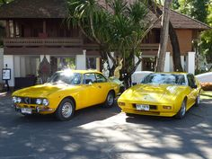 Yellow family of classic cars
