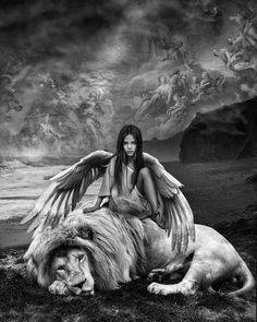 'If you were born without wings, do nothing to prevent them from growing.' by Marcel van Luit on Lion Pictures, Angel Pictures, Angel Artwork, Lion Love, Lion Wallpaper, Angel Warrior, Lion Of Judah, Lion Art, Digital Art Girl