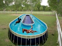 Beau Equine Pool   Horse Training Pool. Above Ground ...