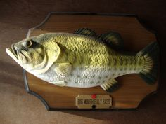 Big mouth Billy Bass for sale in Hereford.  second hand sale ads for free on 2lazy2boot - Hereford car boot fairs - 18898