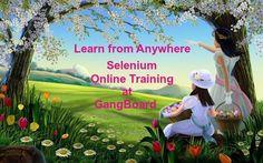 Selenium Online training form GangBoard