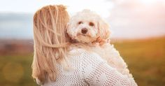 The good news: You're finally ready (emotionally, financially, spatially) to get a dog. The bad news: Your family is allergic. But that doesn't mean that Myrtle the Turtle has to be your only option. Instead, consider one of these hypoallergenic dog breeds to help avoid those pesky symptoms. (Itching, sneezing, runny eyes? Woof.) While the American Kennel Club says there's no such thing as a completely allergy-free dog, there are a few breeds that are less likely to cause a reacti...