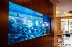 Aquarium on the table might be too mainstream. Actually a lot of creative ideas to put aquarium to make it look unique and interesting, for example, aquarium wall decoration. The aquarium wall is n… Aquarium Design, Aquarium Mural, Nature Aquarium, Aquarium Fish, Large Fish Tanks, Cool Fish Tanks, Saltwater Fish Tanks, Aquariums, Conception Aquarium