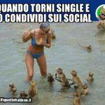 * Single e social