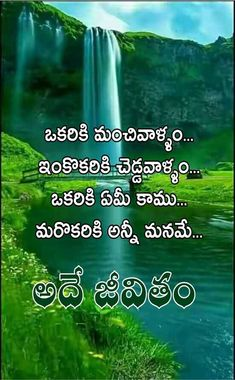 self confidence telugu quotations on inspiration quotes