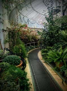 Botanical gardens, Belfast...Go here to take ur own photos.