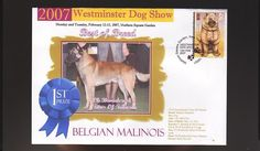 W/M 2007 DOG SHOW BEST of BREED COVER, BELGIAN MALINOIS