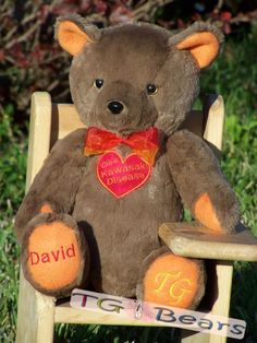 Dani | Custom handmade teddy bear to raise Kawasaki Disease awareness
