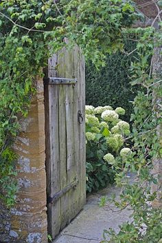 all I want is a garden with a doorway