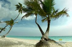 Punta Cana, Dominican - Grand Palladium Resort