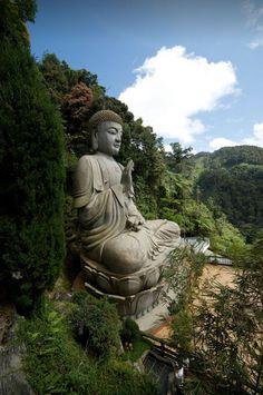 Đạo Phật Nguyên Thủy (Đạo Bụt Nguyên Thủy): Tìm Hiểu Kinh Phật - TRUNG BỘ KINH - Vàsettha