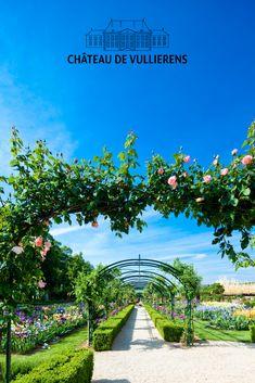 Le Jardin de Doreen du Château de Vullierens, en Suisse, est un paradis floral. Rose, iris, allium, dahlias, tulipes, glycine, tous se mélangent harmonieusement avec des sculptures d'art contemporain. Panifiez votre visite, elle en vaut le détour ! Sculpture, Dahlias, Iris, Vineyard, Outdoor, Gardens, Wisteria Tree, Tulips, Switzerland