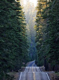 Lassen Volcanic Park, CA - A very long time ago I was blessed to work at that park and drive on that road!